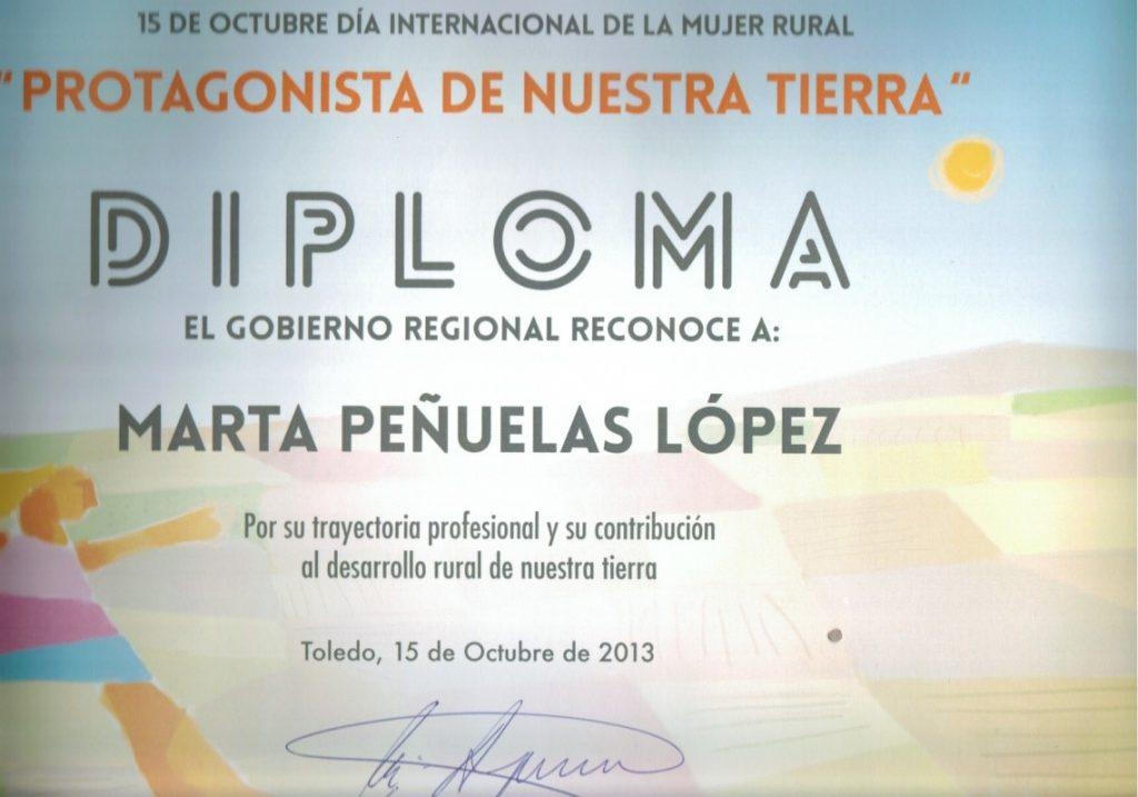 Diploma Gobierno Regional